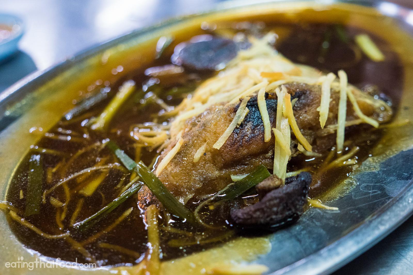 pampano fish