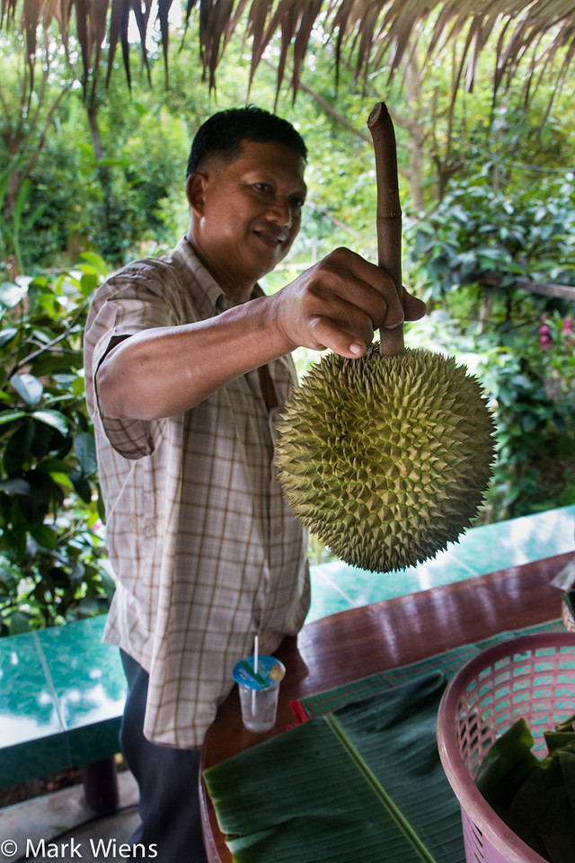 durian thailand 58 X2 Durian Garden of Eden   Eating the King Of Fruits in Nonthaburi