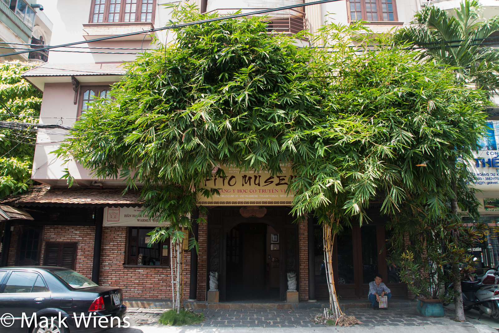 Vietnamese museum of traditional medicine