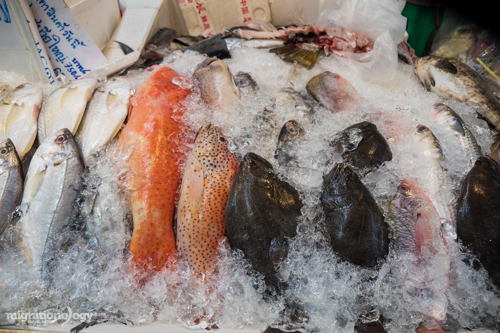 Or Tor Kor Market in Bangkok